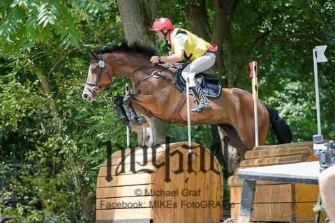 Bene i cavalli del Castegno a Wiener Neustadt